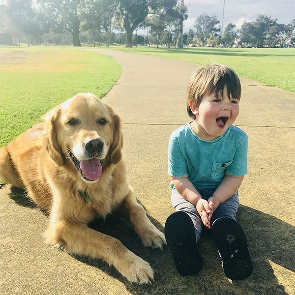 Teaching your child how to interact with dogs and some important signs to look out for