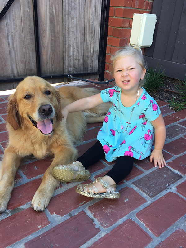 The Positive Impact Dogs have on our Children