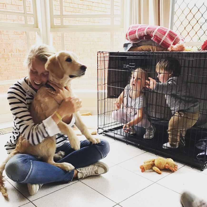 I have young kids, is now the right time to get a puppy?