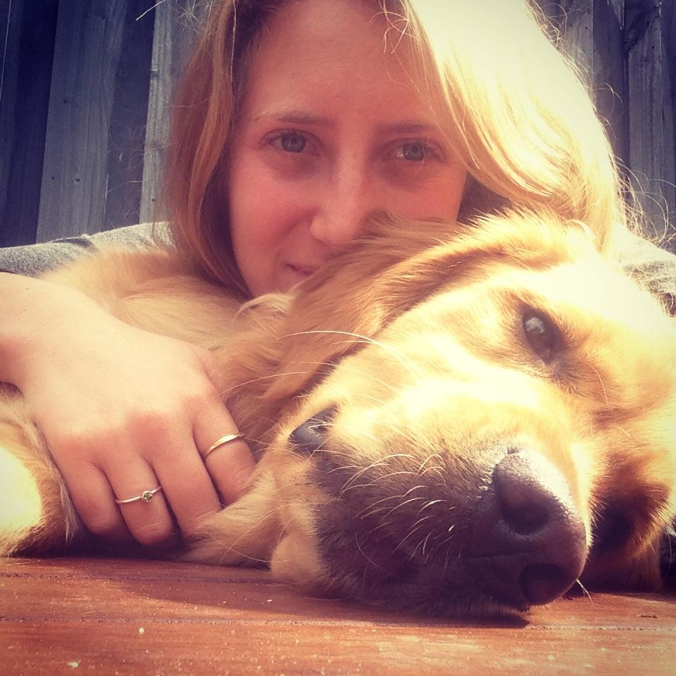 my-dog-has-meningitis