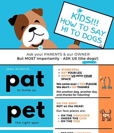 PAT PET PAUSE infographic copy